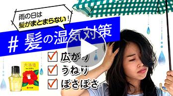 椿油100%「大島椿」で髪の湿気対策