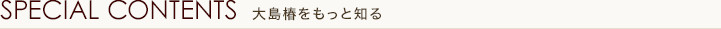 SPECIAL CONTENTS 大島椿をもっと知る