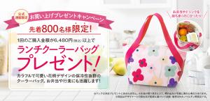 lunchbag_pc